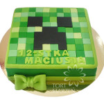 Tort Minecraft
